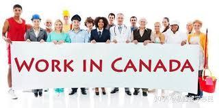 加拿大哪些职业就业率高? - 知乎